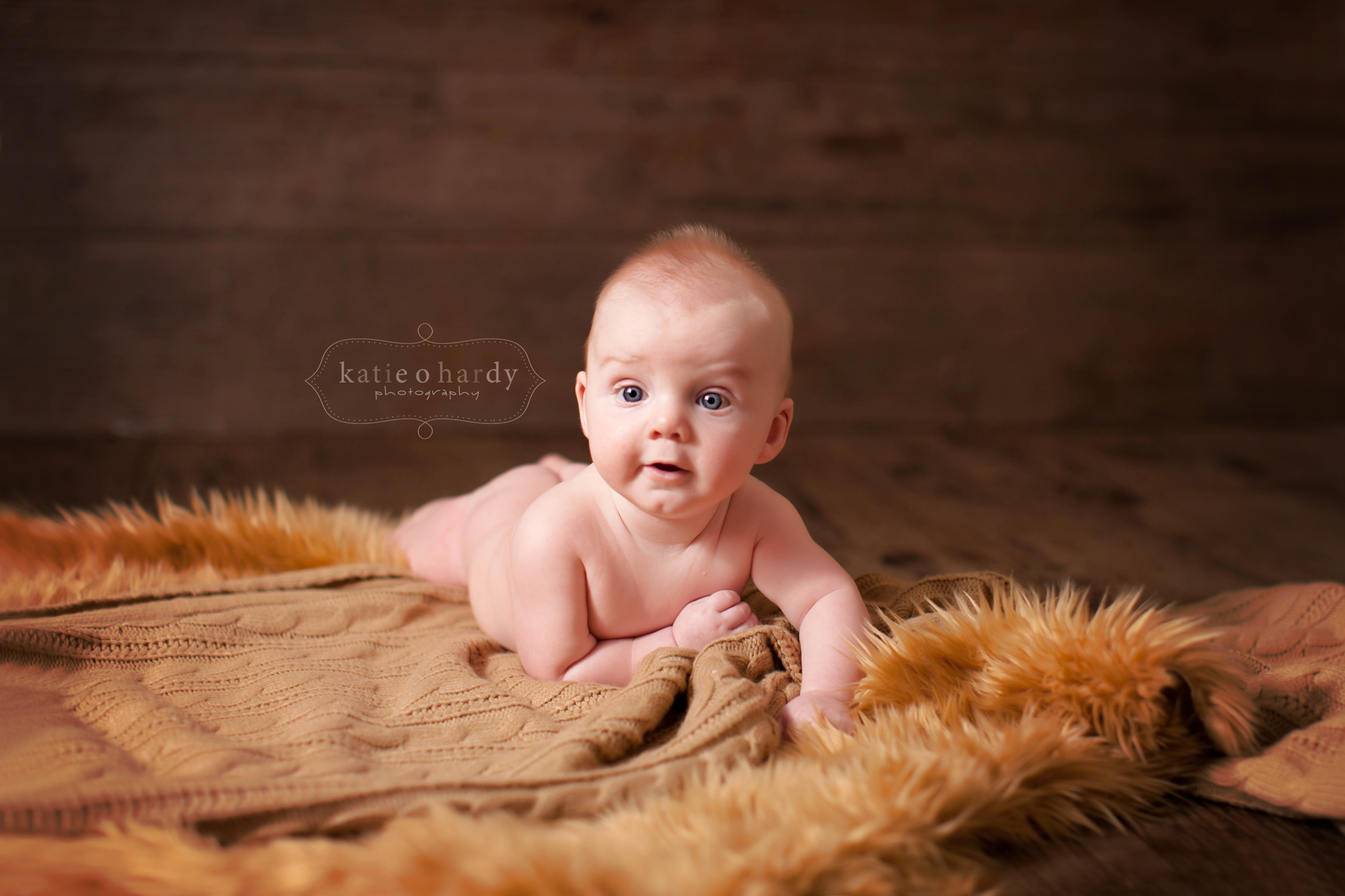 Katie O Hardy Photography Tutorials How To S And